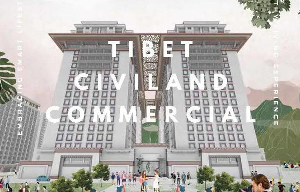 Tibet Landing Project Design Expression Illustration